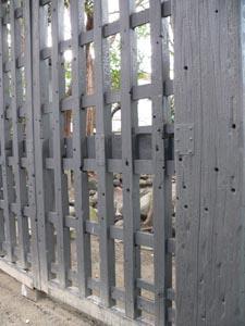 寛永寺黒門の弾痕